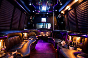 18 people party bus rental Anaheim